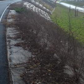 Bio-Mulchmatten für 100% biologischer Erosionsschutz - frei von Plastik