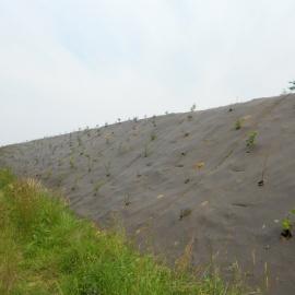 biobasierte dauerhafte Erosionschutzmatte Mulchmatte