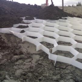 biobasiertes Erosionschutzgitter - Biogitter für Erosionschutz