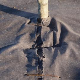 Biocovers Baumschutz-tree protection