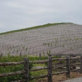 Biocovers Bioweedstop für 100% biologischen und effektiven Erosionsschutz