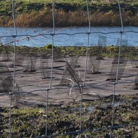 Biocovers Bioweedstop Unkraut und Erosionskontrole