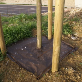 Biocovers Bioweedstop used as tree protection