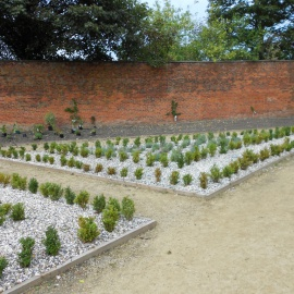 BIOCOVERS® combined with gravel topping
