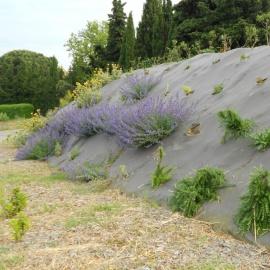 Biocovers paillage et protection de l'érosion, respect de l'environnement,  intégration esthétique - projet Vinci