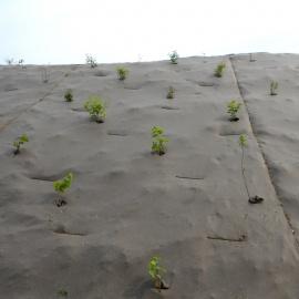 dauerhaften Biocovers Mulchmatten statt Kokosgewebe mit Folie zur späteren Bepflanzung