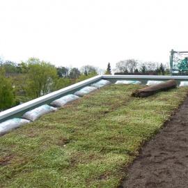 100% biobasierte Trägermatten für Gruendächer
