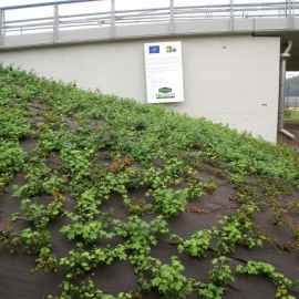 Mulchmatte für Unkraut- und Erosionskontrole