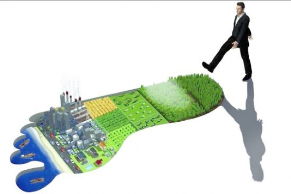 Ecological Footprint BIOCOVERS® products
